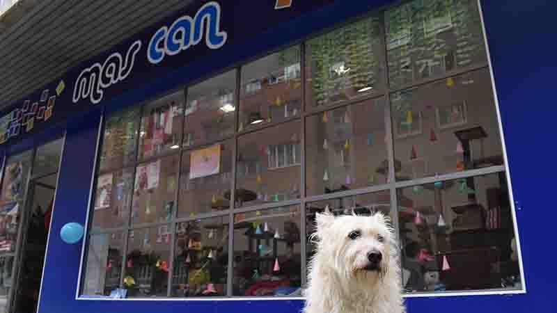 Nuestra fachada de la tienda de Muñoz Degrain con Flipa