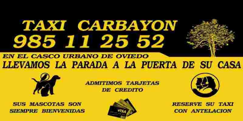 Lláma a tu taxi para perros al teléfono 985112552